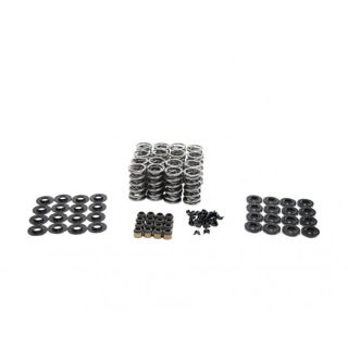 "Picture of BTR .660"" LIFT PLATINUM SPRING KIT"